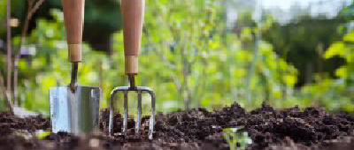 Community Garden and Gardening Classes